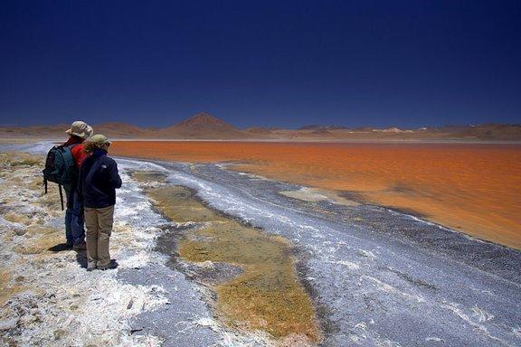 Salar de Coipasa, Salar de Uyuni, Volcán Sajama, Isla del Sol, La Paz