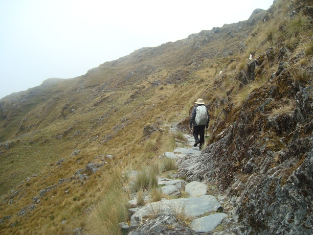 Yunga Cruz trekking en los  Andes